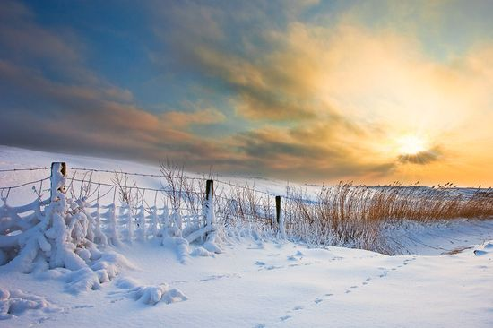 103 in Snowy Winter Photography