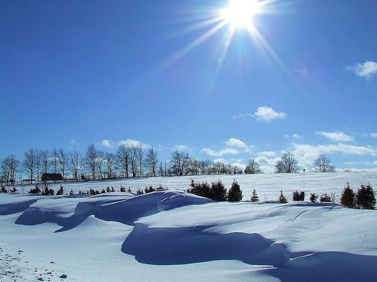 132 in Snowy Winter Photography