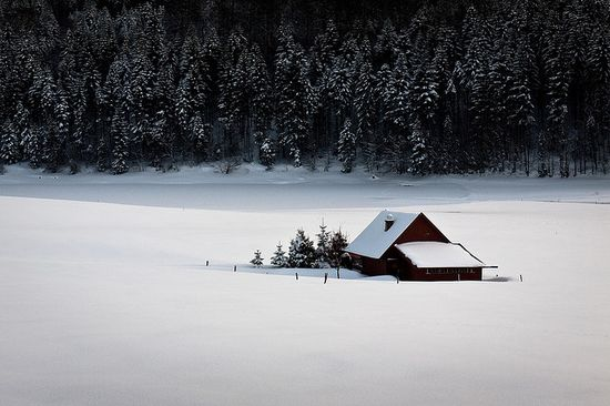 151 in Snowy Winter Photography