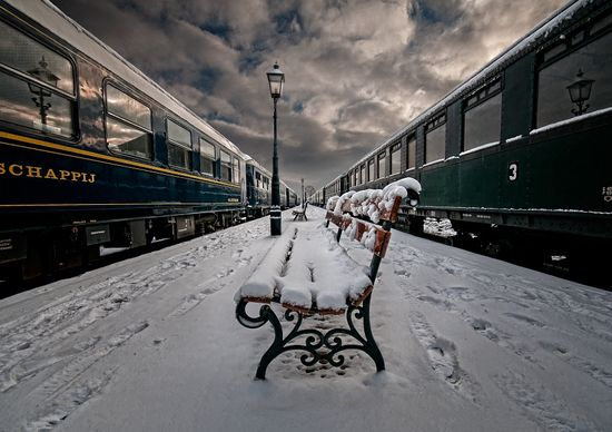 17 in Snowy Winter Photography