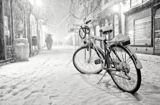 310 in Snowy Winter Photography