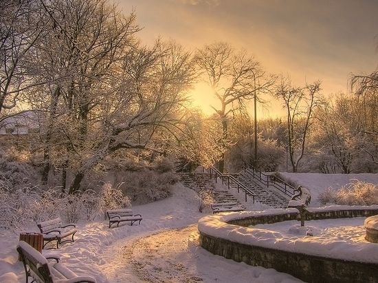 411 in Snowy Winter Photography