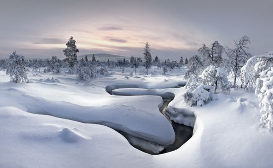 531 in Snowy Winter Photography