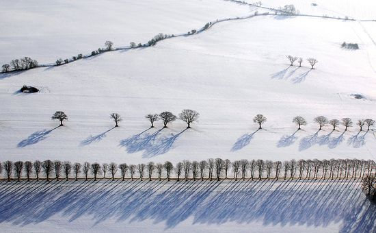 94 in Snowy Winter Photography