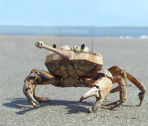 Tank Crab